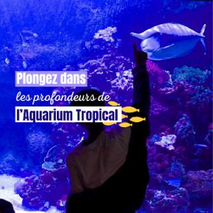 Immersion à l'Aquarium Tropical du Palais de la Porte Dorée