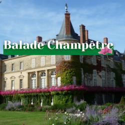 Visite du château de Rambouillet