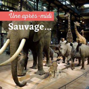 Visite de La Grande Galerie de l'Evolution