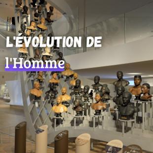 Le Musée de l'Homme - Coupe-file !