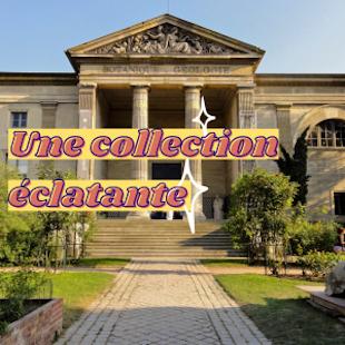 Visite de la Galerie de Minéralogie « Trésors de la Terre » - Coupe-file !